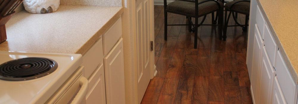 Carpet Tender More Than Just Carpet Cleaning In Renosparks